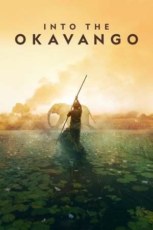 Poster: Expedition ins Okavangodelta