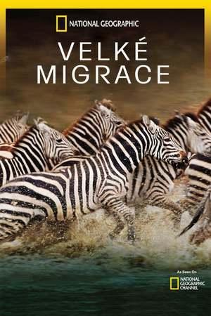 Poster: Das große Wunder der Tierwanderungen