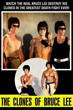 Poster: Bruce Lee - Seine Erben nehmen Rache