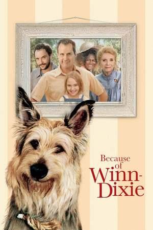 Poster: Winn-Dixie – Mein zotteliger Freund