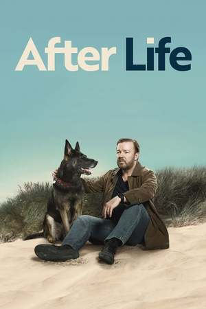 Poster: After Life