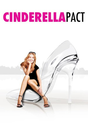 Poster: Cinderella Love Story