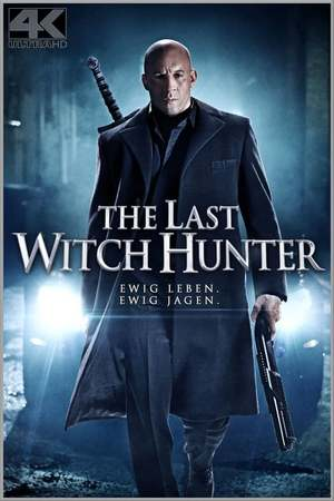 Poster: The Last Witch Hunter