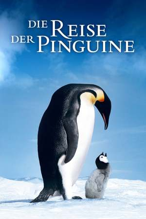 Poster: Die Reise der Pinguine