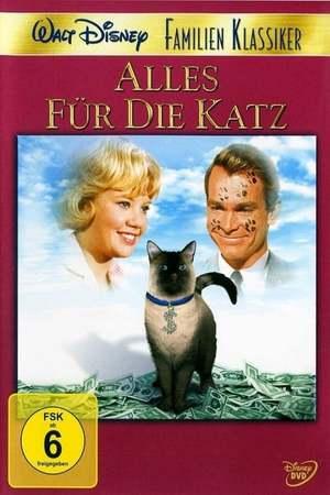 Poster: Alles für die Katz