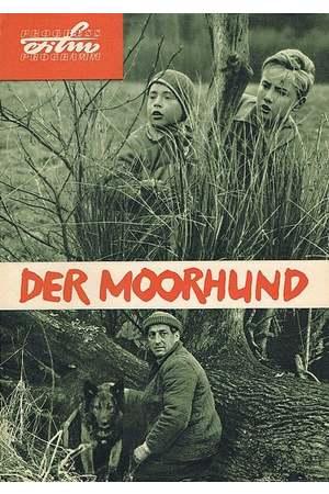 Poster: Der Moorhund