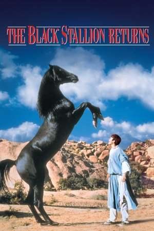 Poster: Der schwarze Hengst kehrt zurück