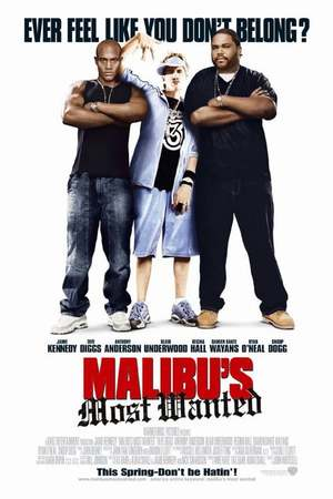 Poster: Malibu's Most Wanted
