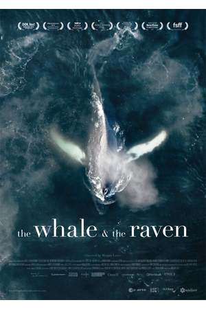 Poster: The Whale and the Raven
