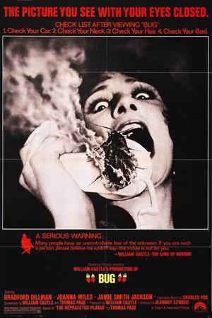 Poster: Feuerkäfer