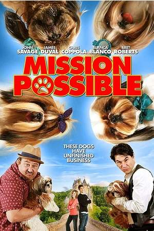 Poster: Mission Possible