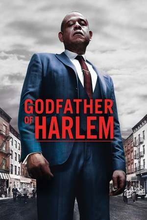 Poster: Godfather of Harlem