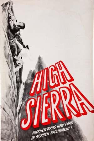 Poster: Entscheidung in der Sierra