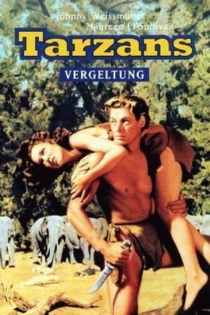 Poster: Tarzans Vergeltung