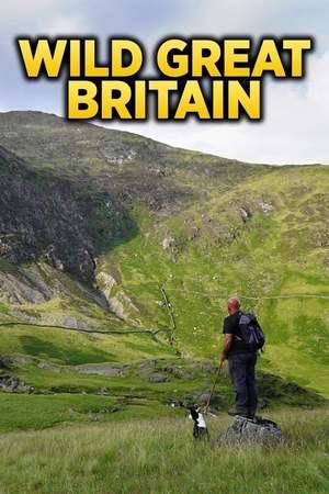 Poster: Wildes Großbritannien