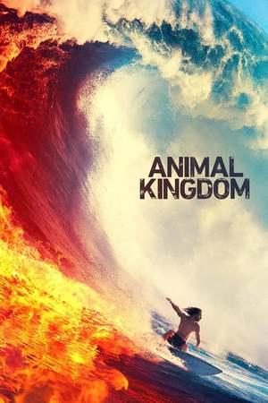 Poster: Animal Kingdom