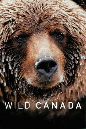 Poster: Wild Canada