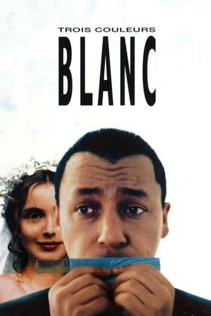 Poster: Drei Farben: Weiß