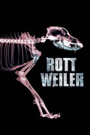 Poster: Rottweiler