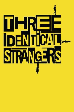 Poster: Three Identical Strangers
