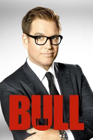 Poster: Bull