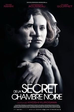 Poster: Das Geheimnis der dunklen Kammer