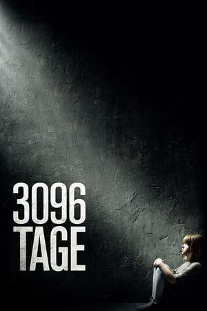 Poster: 3096 Tage
