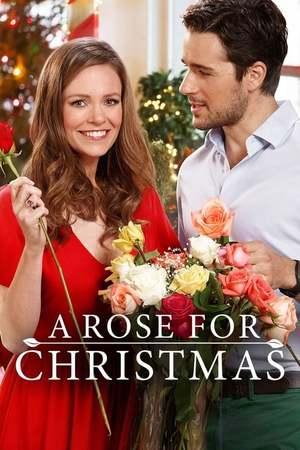 Poster: Rosige Weihnachten