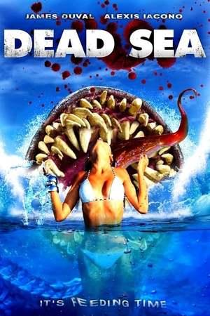 Poster: Dead Sea