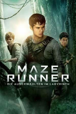 Poster: Maze Runner - Die Auserwählten im Labyrinth