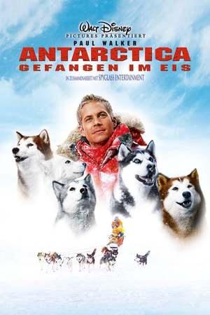 Poster: Antarctica - Gefangen im Eis