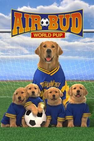 Poster: Air Bud 3 – Ein Hund für alle Bälle