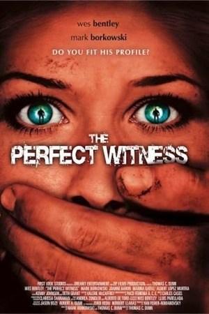 Poster: The Perfect Witness - Der tödliche Zeuge