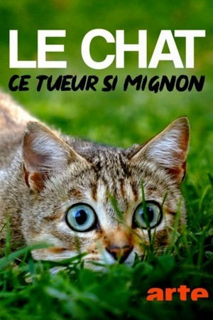 Poster: Mörderische Mieze - Die Katze