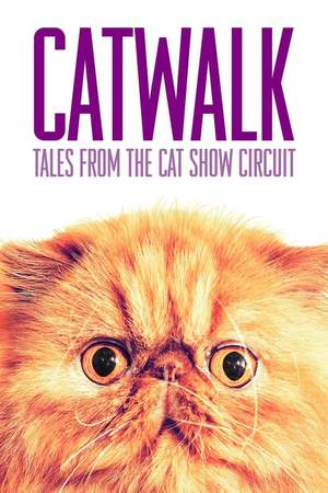 Poster: Catwalk: Tales from the Catshow Circuit
