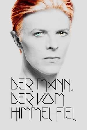 Poster: Der Mann, der vom Himmel fiel