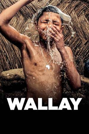 Poster: Wallay