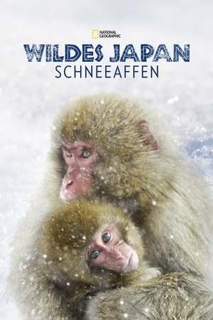 Poster: Wildes Japan: Schneeaffen