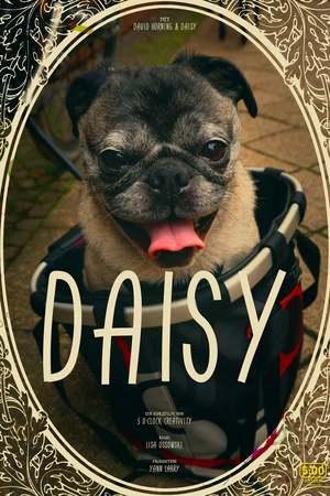 Poster: Daisy
