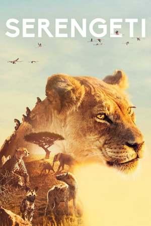 Poster: Serengeti